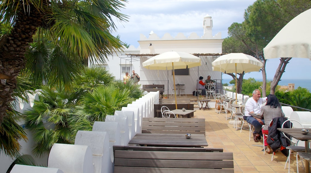 Villa San Michele showing dining out, a coastal town and outdoor eating