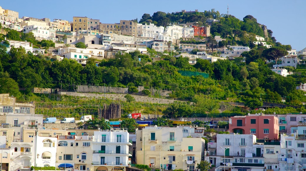 Capri Island which includes a small town or village and a coastal town