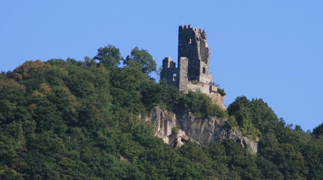 Königswinter mit einem Burg und Wälder