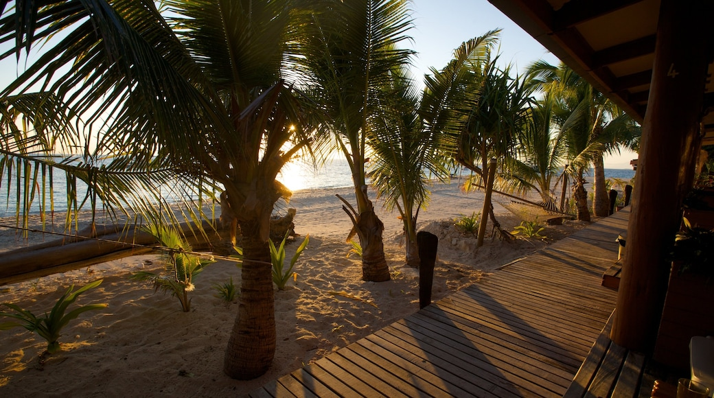 Fiji showing tropical scenes, a sunset and a sandy beach