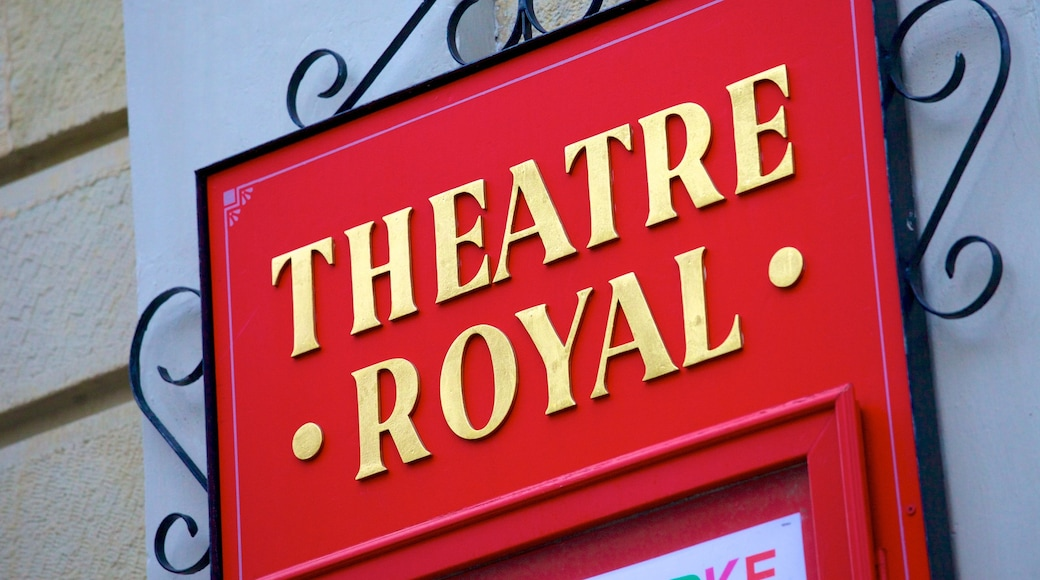 Theatre Royal showing signage and theatre scenes