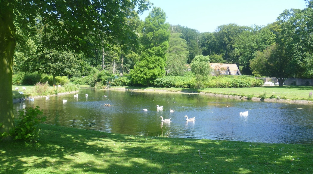 Park Clingendael which includes a pond and a garden