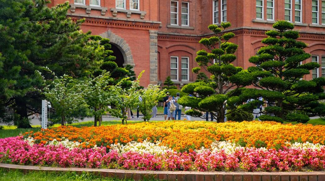 北海道政府旧址