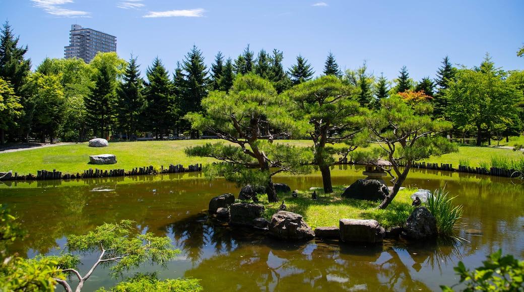 Parque Nakajima