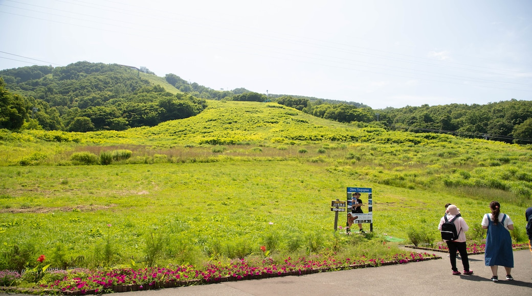 Mount Tengu