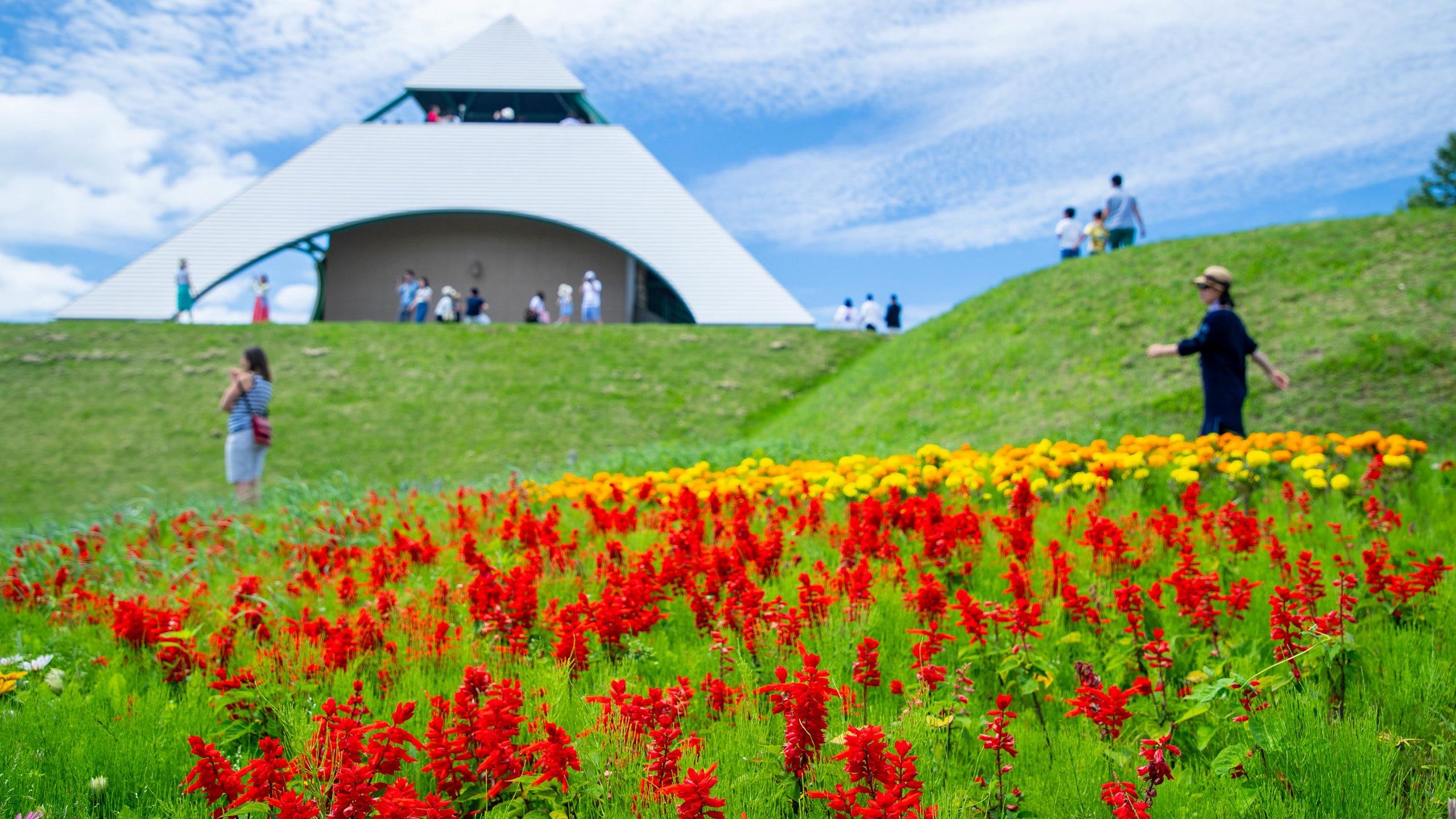 Hokuseinookatenbo Park, Biei, Hokkaido Prefecture, Japan
