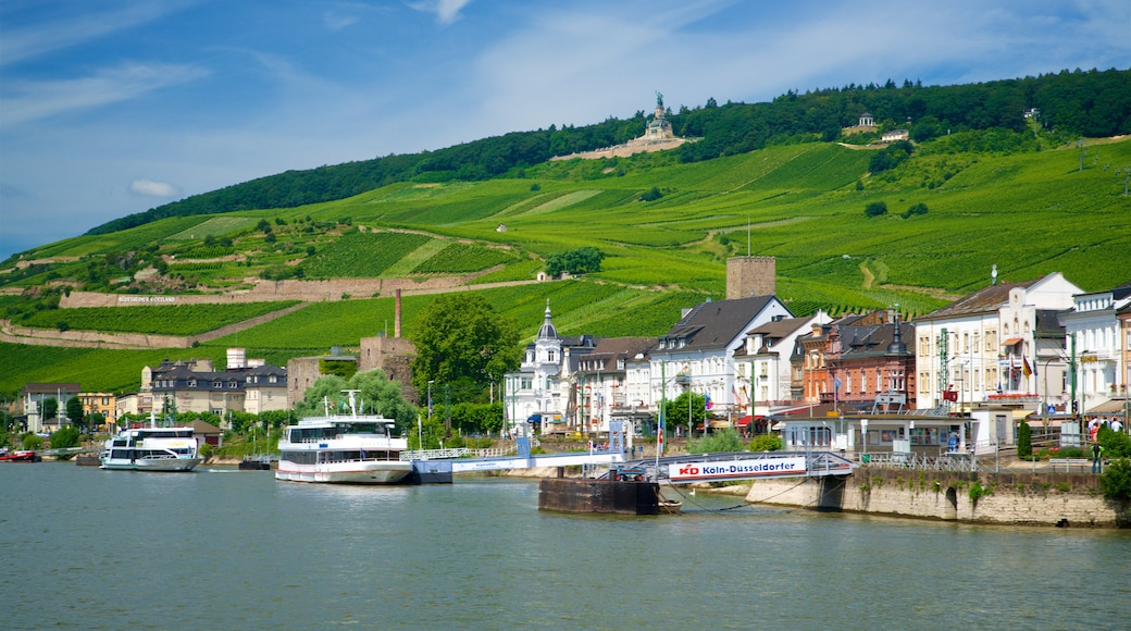 Rheingau Wine Region which includes a small town or village, a lake or waterhole and tranquil scenes
