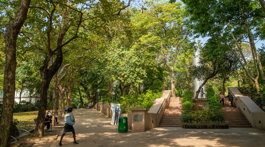Kowloon Park featuring a park