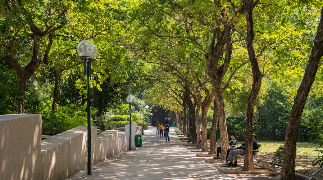 Kowloon Park which includes a park