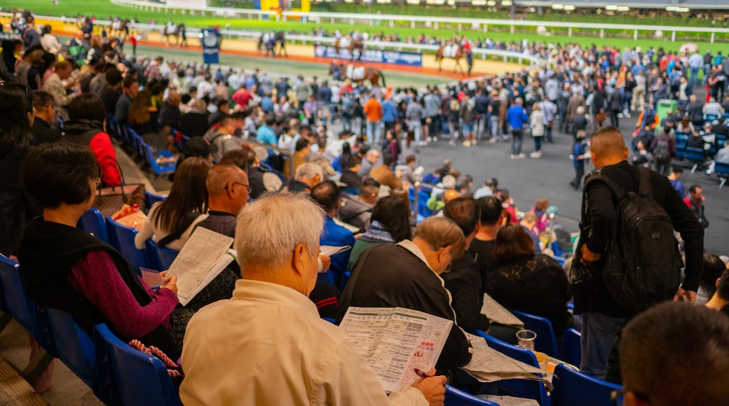 Happy Valley Race Course showing a sporting event as well as a large group of people