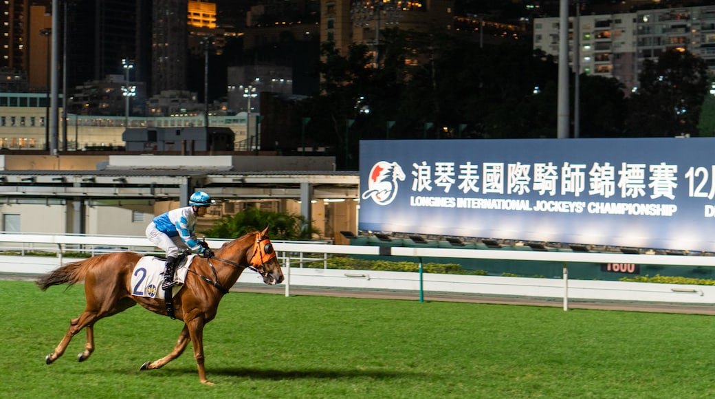 Happy Valley Race Course which includes horseriding, land animals and a sporting event
