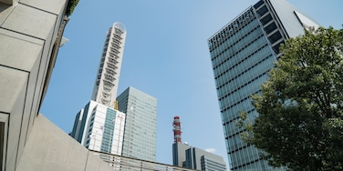 Saitama Super Arena showing a city and a high rise building