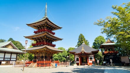 Narita Tourist Pavilion showing heritage elements