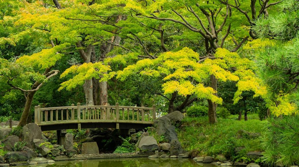 Hibiya Park which includes a pond, a garden and a bridge