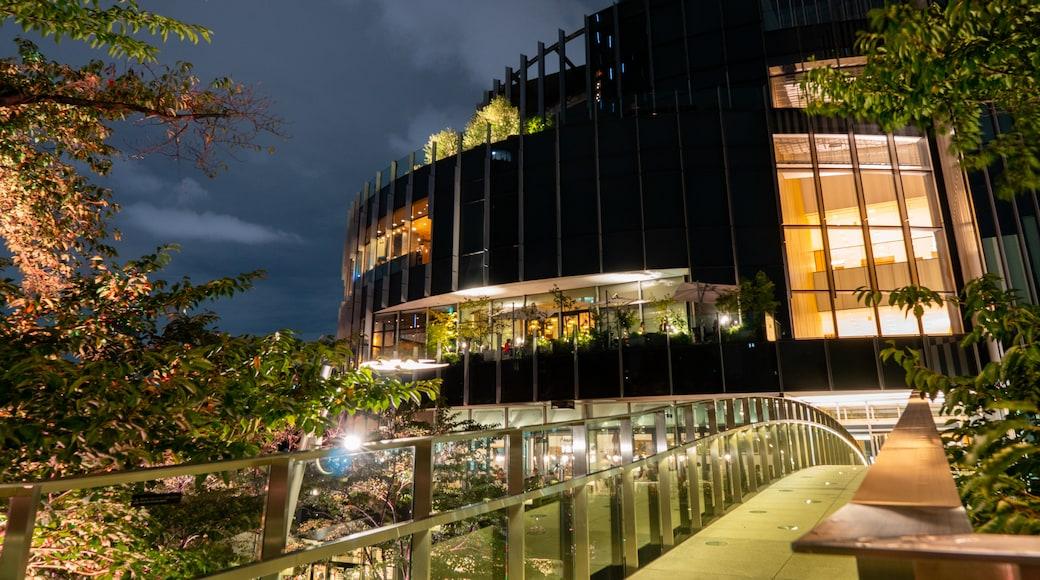 Tokyo Midtown showing night scenes and a bridge
