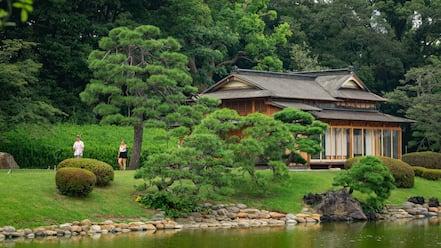 Hamarikyu Garden which includes a pond and a park