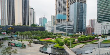 Shenzhen which includes a garden and a city