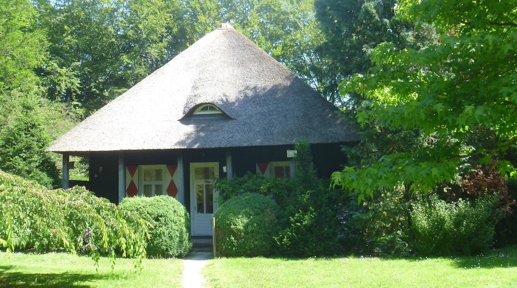 Park Clingendael showing a park and a house