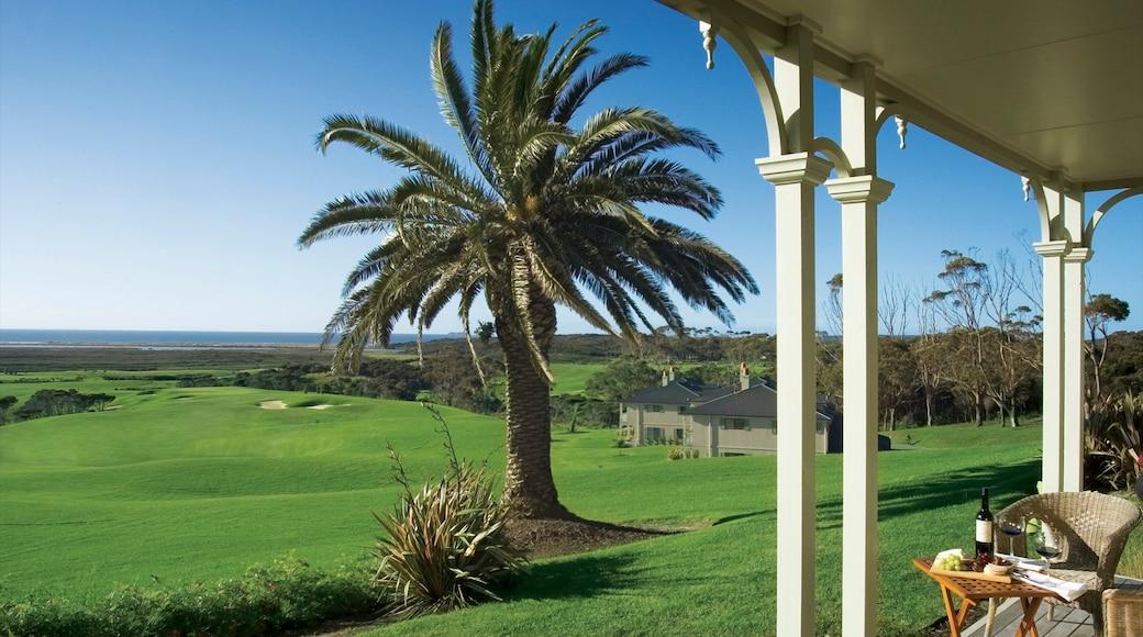 Karikari Peninsula showing golf