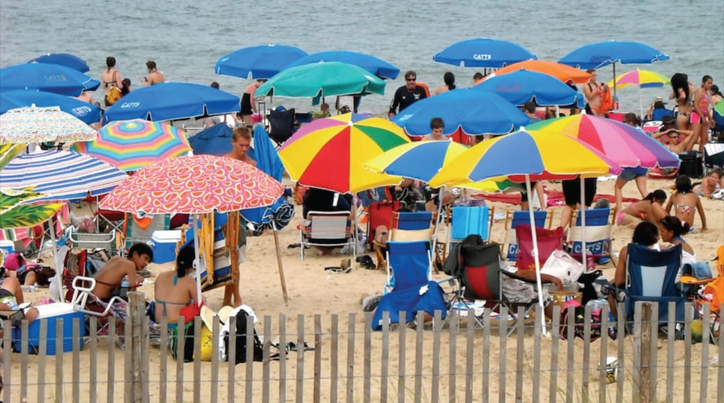 Dewey Beach showing a sandy beach as well as a large group of people