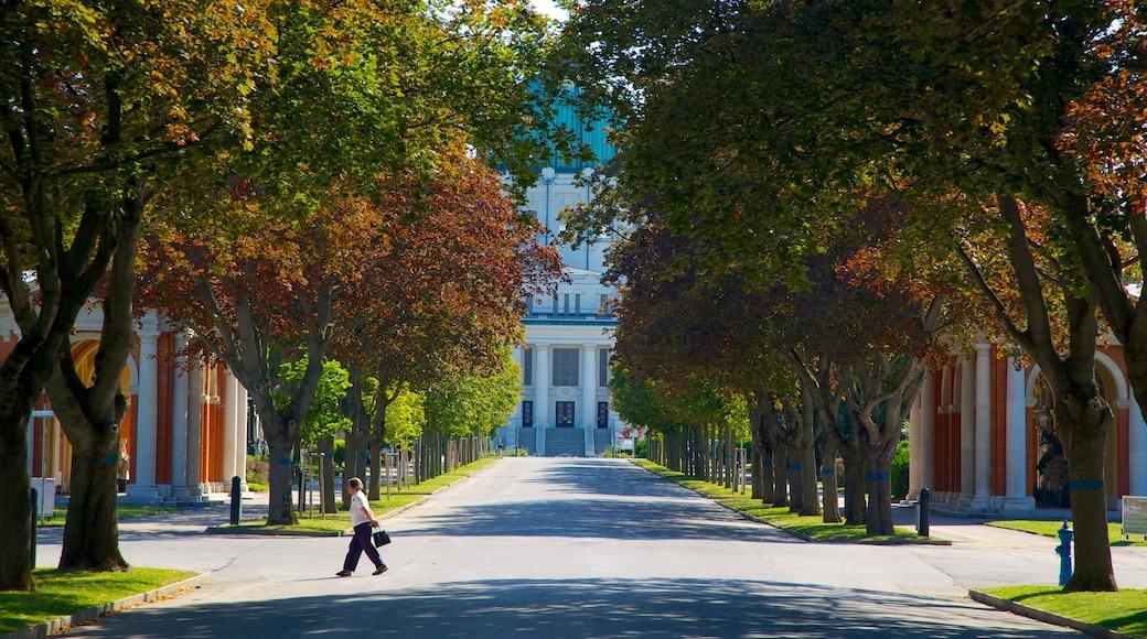 Wiener Zentralfriedhof bevat straten en ook een man