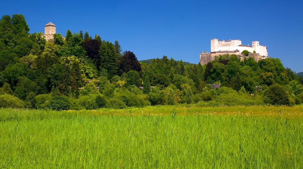 Festung Hohensalzburg mit einem Landschaften und Burg