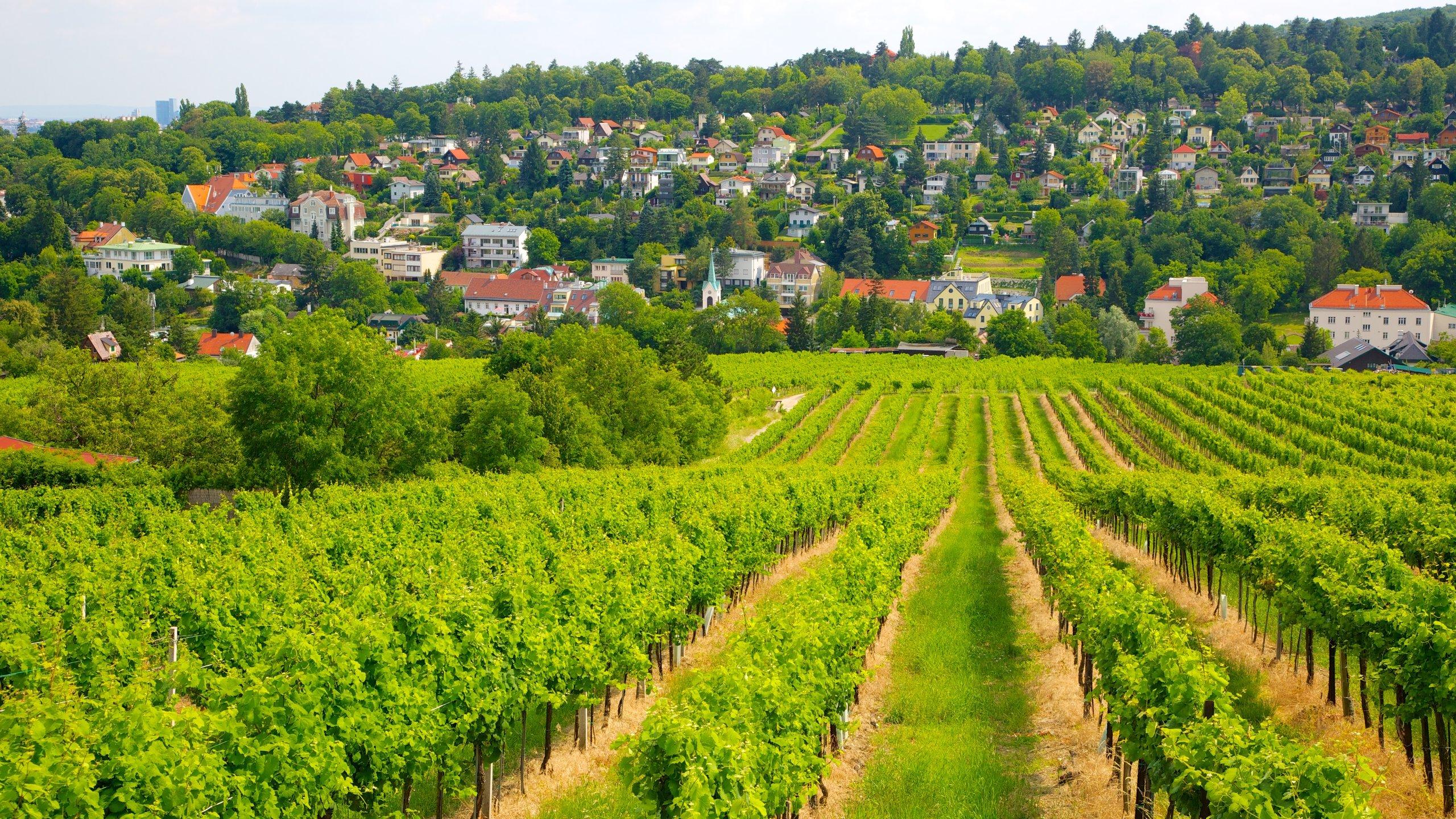 Liezen, Styria, Österrike
