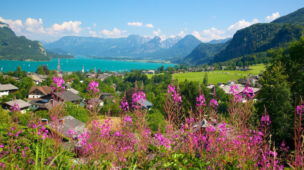 St. Gilgen mit einem Blumen, Kleinstadt oder Dorf und See oder Wasserstelle