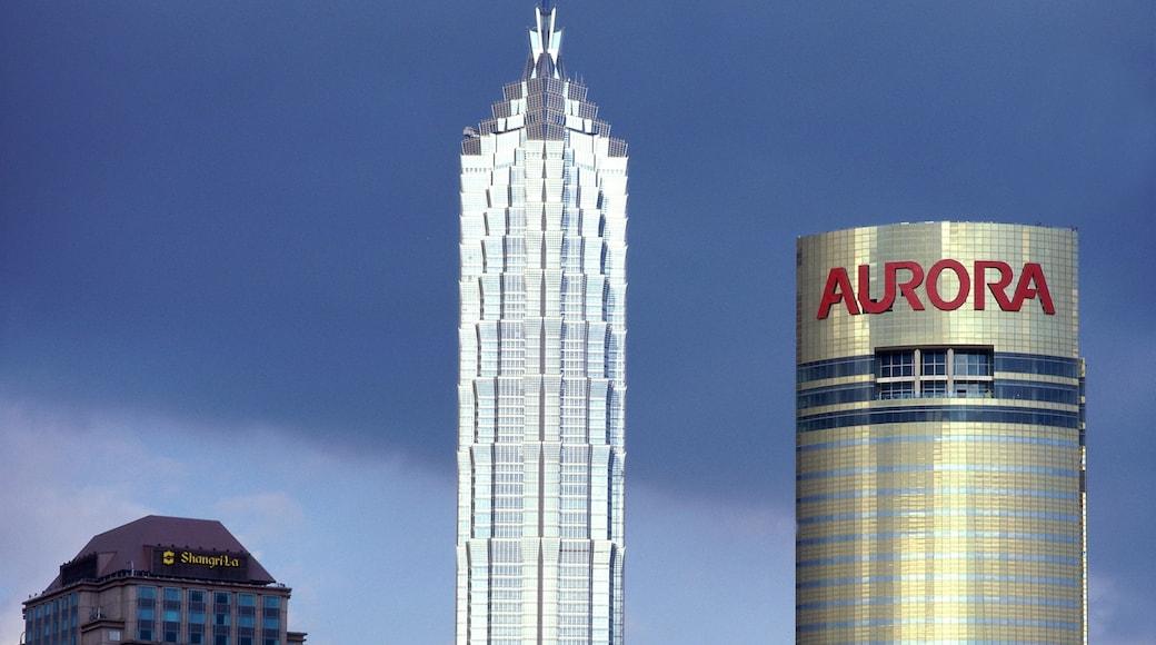 上海 设有 現代建築, 指示牌 和 核心商業區