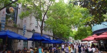 Xintiandi welches beinhaltet Essen im Freien, Stadt und Straßenszenen