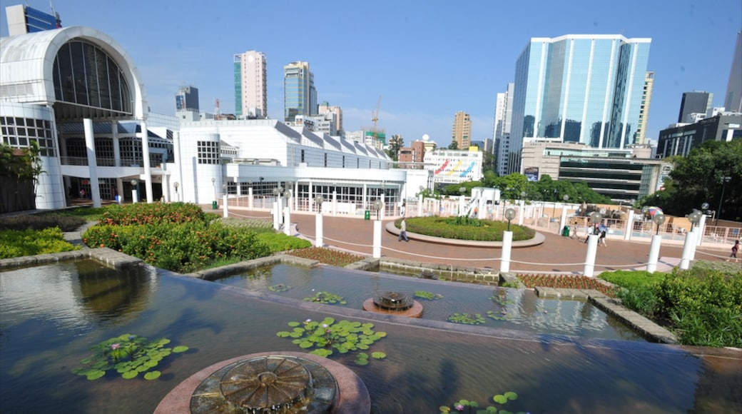 Kowloon Park showing a garden, a pond and a city