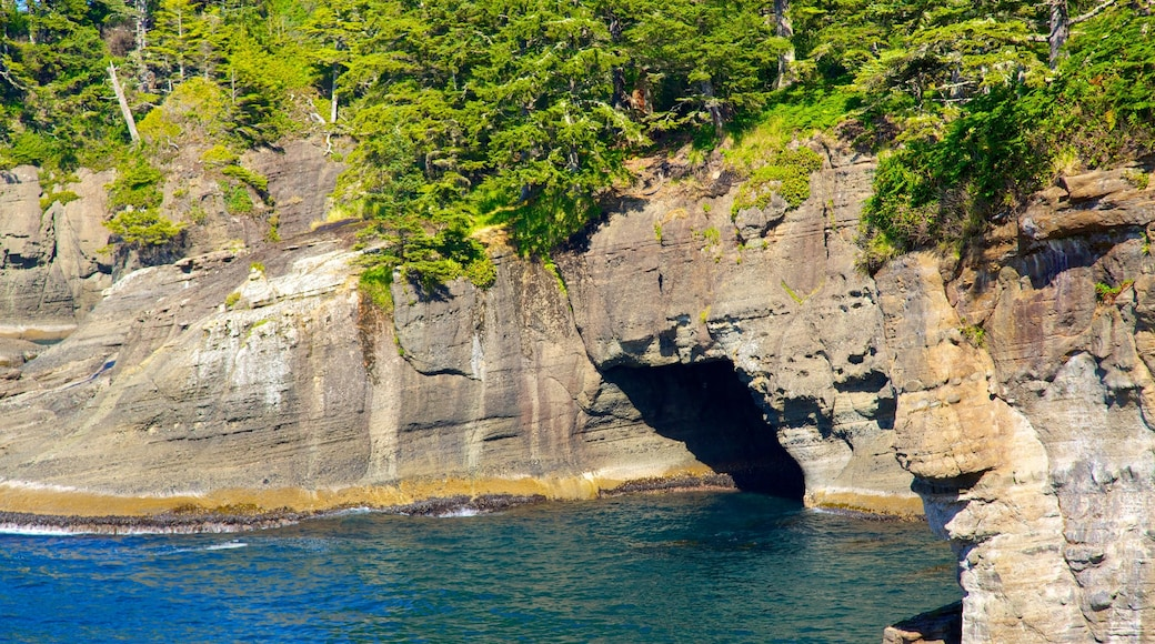 Cape Flattery featuring general coastal views and rocky coastline