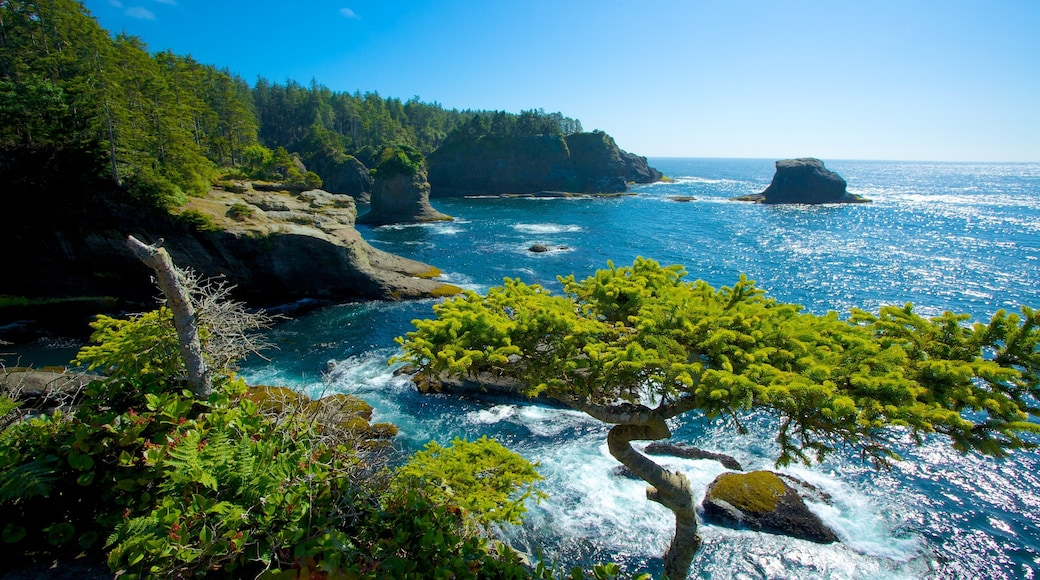 Cape Flattery featuring rocky coastline, landscape views and a bay or harbor