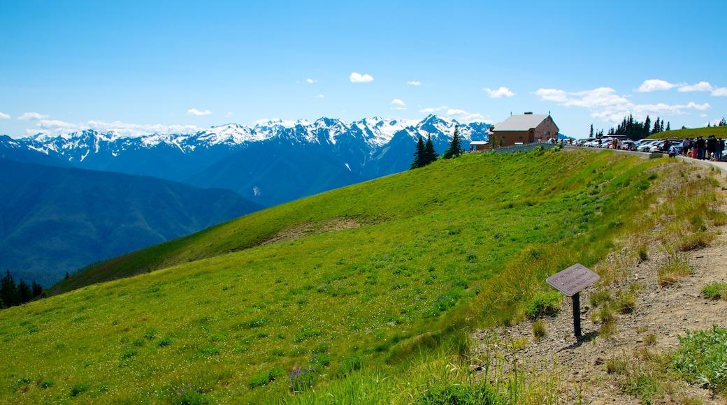 Hurricane Ridge Visitors Center showing landscape views and mountains