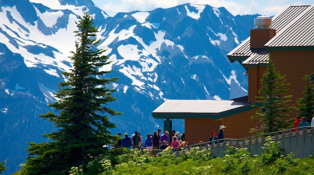 Hurricane Ridge Visitors Center featuring snow, views and mountains