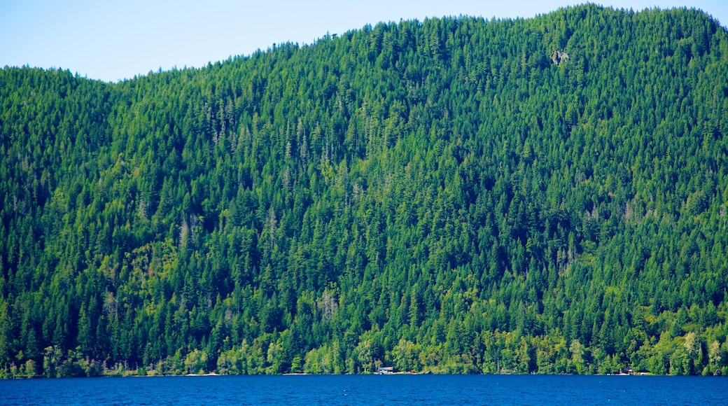 Olympic National Park which includes tranquil scenes, mountains and forests
