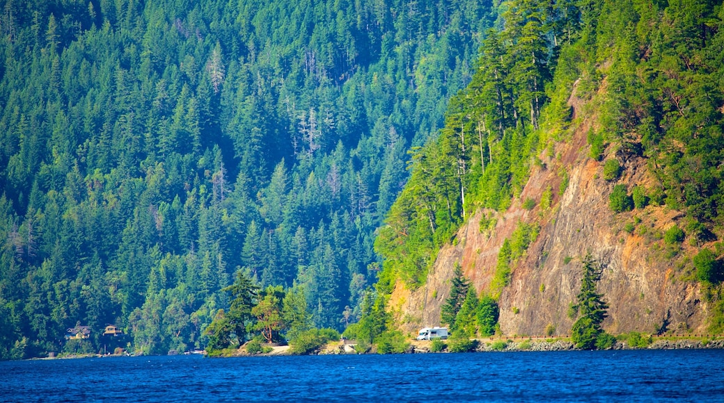 Olympic National Park featuring a lake or waterhole and forest scenes