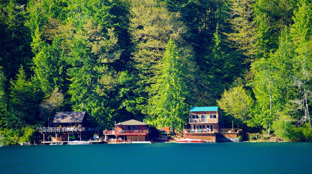 Washington Coast showing landscape views and a house