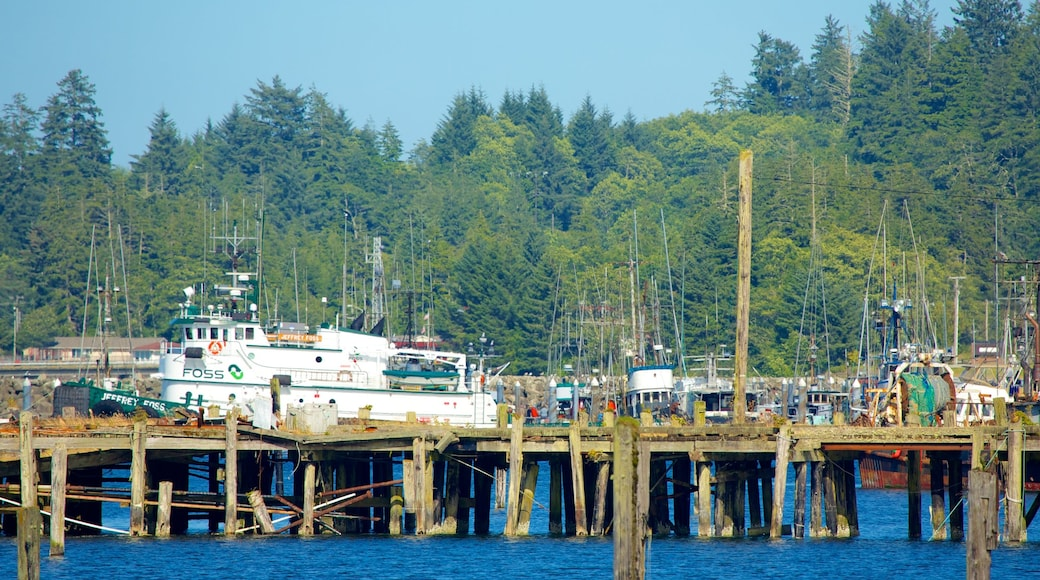 Neah Bay showing a bay or harbour, a marina and boating