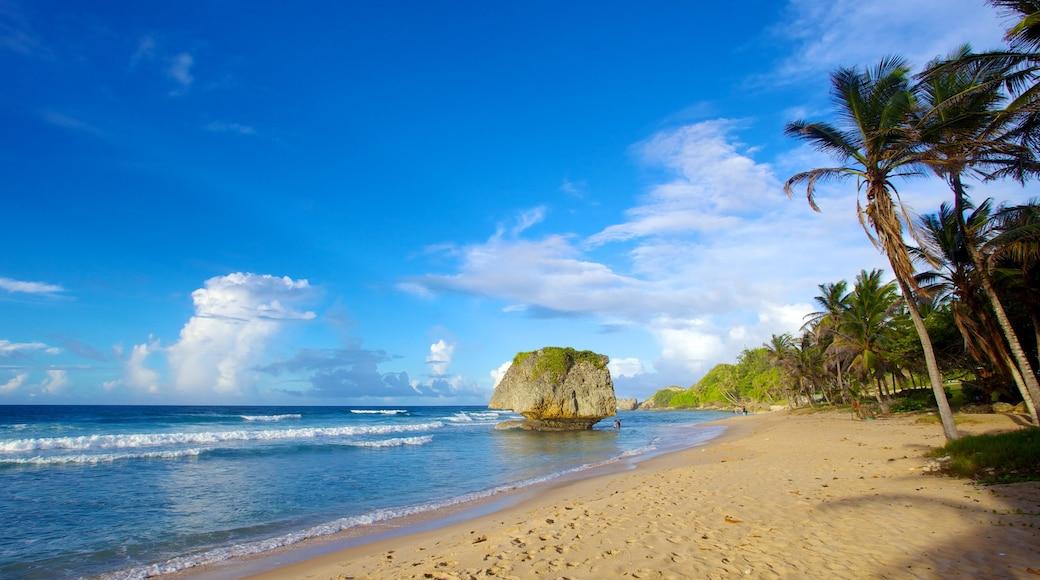 Bathsheba featuring tropical scenes, landscape views and a beach