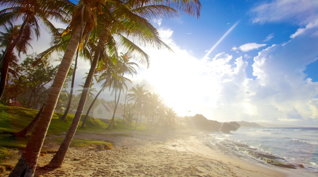 Bathsheba which includes landscape views, a beach and tropical scenes