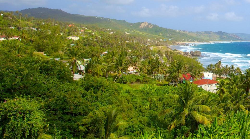 Bathsheba which includes general coastal views, landscape views and tropical scenes