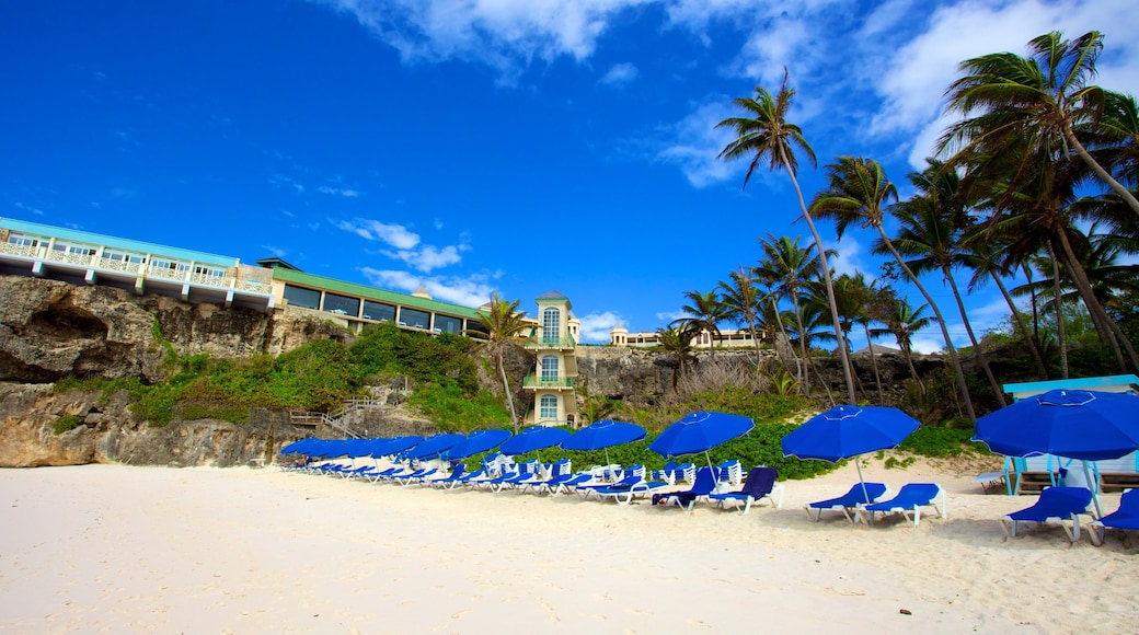 Crane Beach featuring a sandy beach, general coastal views and tropical scenes