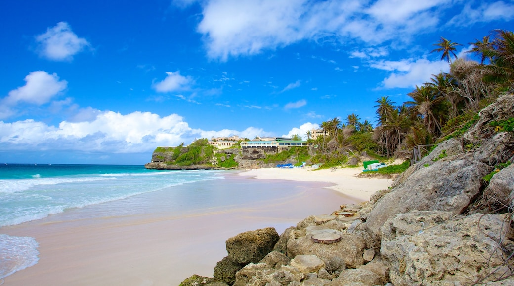 Crane Beach which includes a beach, landscape views and tropical scenes