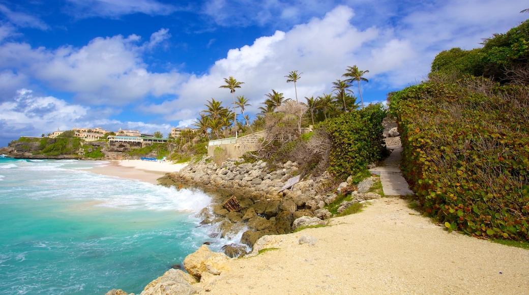 Crane Beach which includes rugged coastline, tropical scenes and a beach
