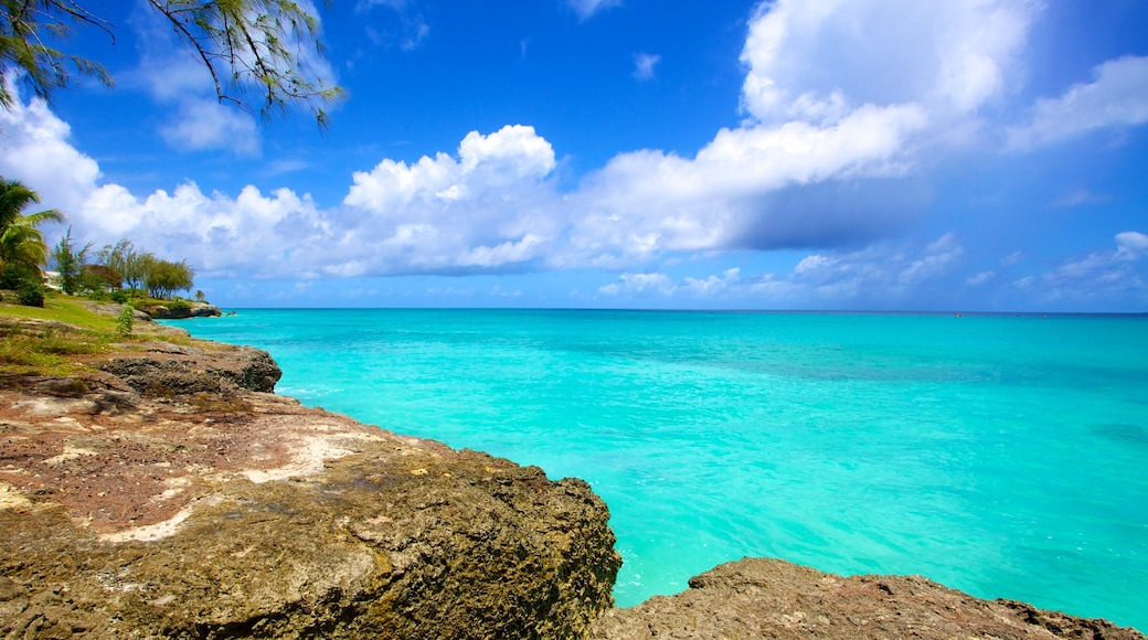 Miami Beach which includes rugged coastline, tropical scenes and general coastal views