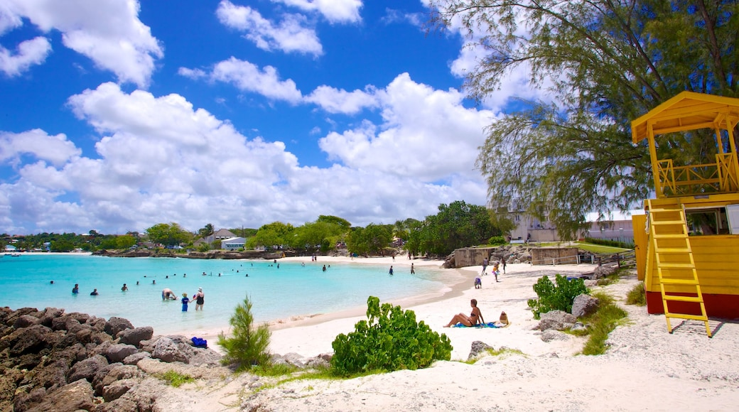 Miami Beach featuring tropical scenes, swimming and a coastal town