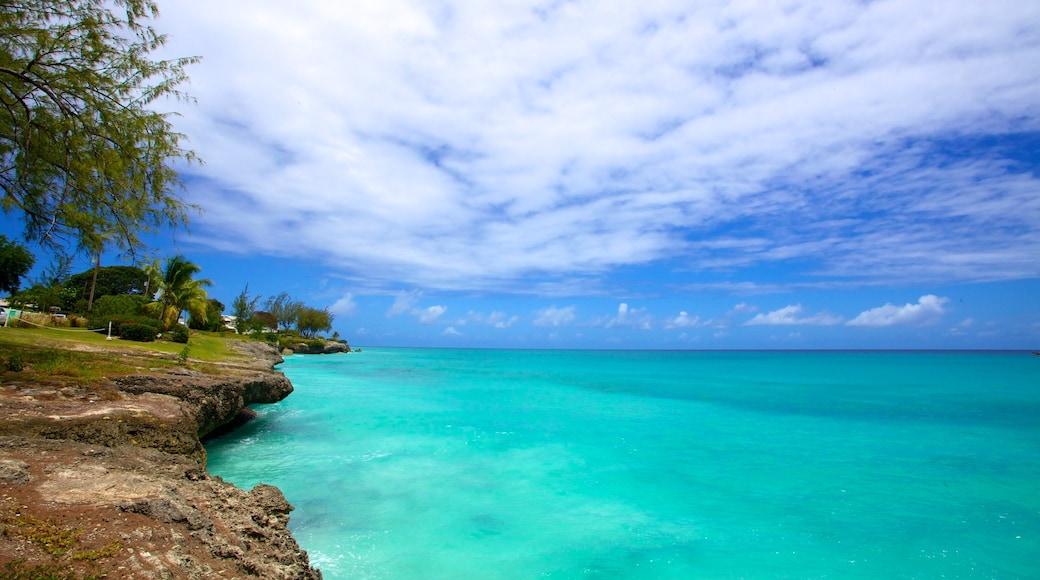 Miami Beach which includes landscape views, tropical scenes and rocky coastline