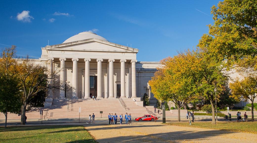 Centro de Washington D. C.