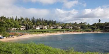 Kapalua, Hawaii, United States of America